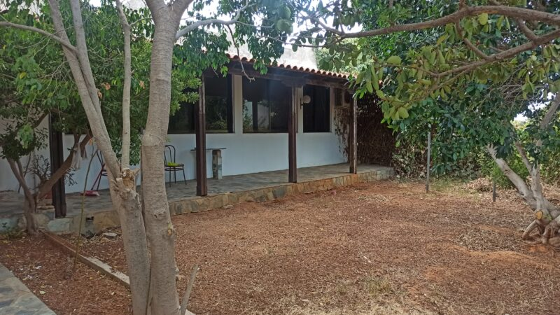 house for rent chania